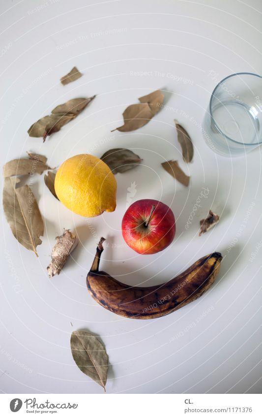 obst und so Gesunde Ernährung Gesundheit Lebensmittel Frucht Glas Trinkwasser Getränk lecker Bioprodukte Apfel Zitrone Banane vitaminreich Lorbeer Ingwer