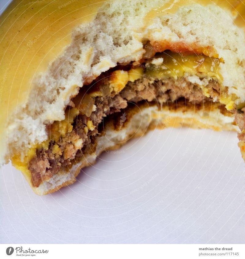 Heut Gibts Burger Jungs! 4 alt gelb kalt Ernährung Lebensmittel Zähne USA verfallen trocken Gastronomie Kuh Brot Karton Fett Fleisch Brötchen