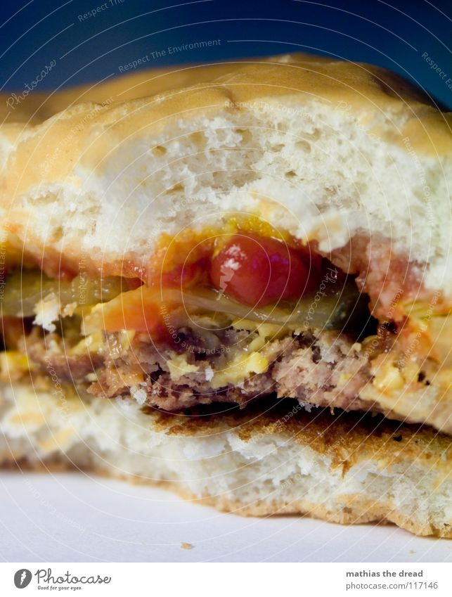 Heut Gibts Burger Jungs! 5 Käse Fleisch Rind Kuh Gewürzgurke Brot Karton Brötchen Weizen Mehl Ketchup trocken kalt verfallen geschmacklos Geschmackssinn