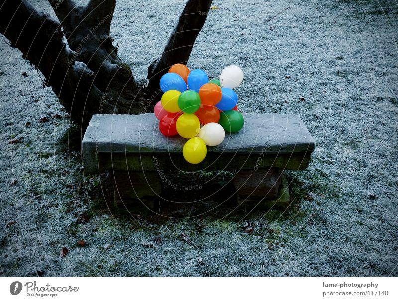 99 - Luftballons mehrfarbig knallig Kontrast Physik kalt Eis Winter Park Parkbank Sitzgelegenheit Wiese Steinbank Baum besetzen Einsamkeit Trauer vergangen