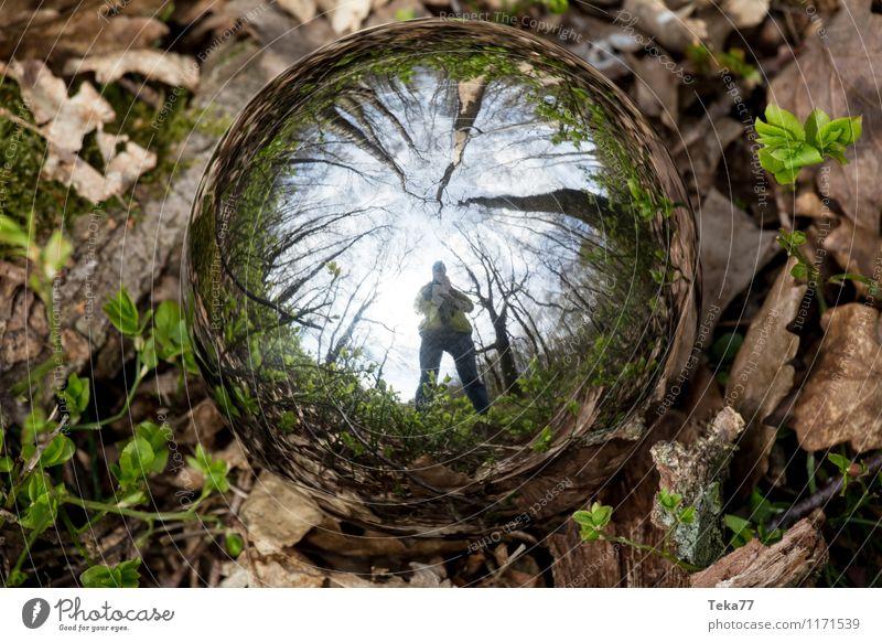 Kugelselfie Natur Pflanze Landschaft Wald Umwelt Gras Feld ästhetisch Moos