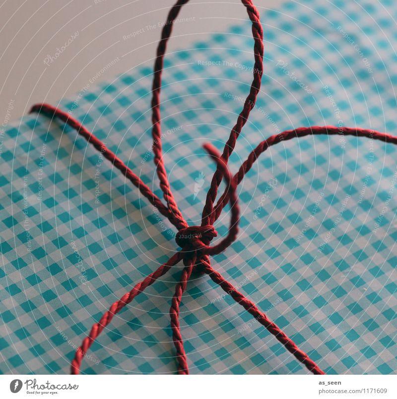 Geschenk packen blau Farbe weiß rot Freude Linie Design Dekoration & Verzierung Geburtstag ästhetisch Beginn Kreativität Lebensfreude Papier Schnur Neugier