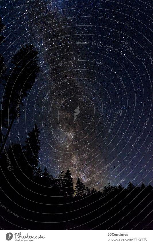 Milchstrasse Ausflug Abenteuer Ferne Freiheit Berge u. Gebirge Natur Landschaft Himmel Nachthimmel Stern Schönes Wetter Wald Österreich Salzburg entdecken