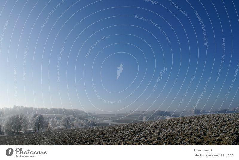 Winterwellen [orientation:landscape] Feld Baum Wiese Nebel schlechtes Wetter braun weiß Farbverlauf ruhig Raureif kalt Eis Klarheit Luft schön gepflügt Hügel
