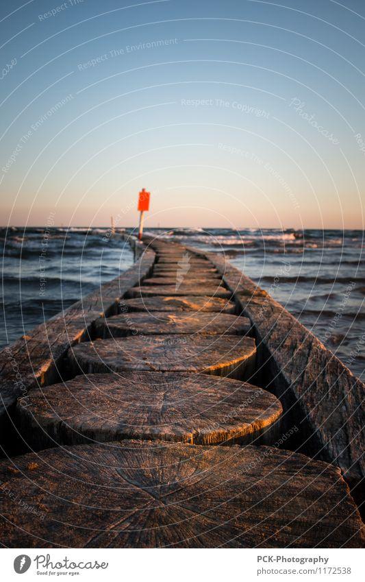 Wellenbrecher Wasser Wolkenloser Himmel Horizont Frühling Sommer Herbst Schönes Wetter Wind Küste Strand Bucht Nordsee Ostsee Hafen Holz Schutzschild blau braun