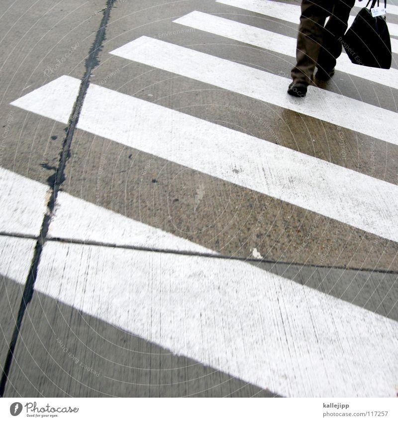 farblos Ladengeschäft Zebra Zebrastreifen Geschäftsleute Mann Rollfeld grau weiß gehen Richtung Vorteil Vorfahrt Tasche Koffer Gepäck Hose Schuhe Anzug schwarz