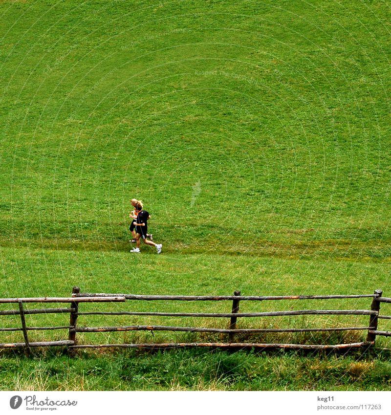 Alpenjogging Joggen Bundesland Tirol Wiese Alm Zaun Holz Turnschuh Sportbekleidung Luft Gesundheit Österreich Schweiz Mann Frau Fitness Freude Spielen Natur