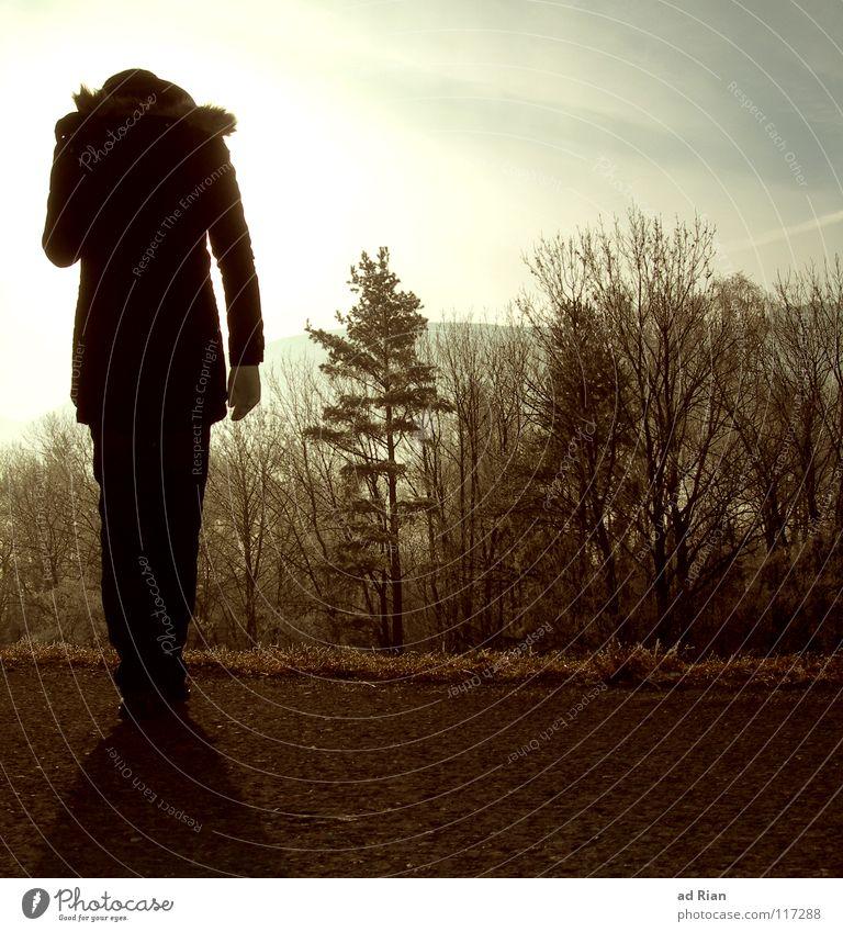 One Step Behind Frau Himmel Baum Sonne Winter schwarz Wald kalt grau braun Erwachsene Nebel Hoffnung Zukunft stehen Spaziergang