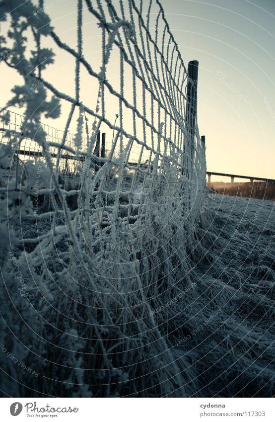 FROSTIG Winter kalt Einsamkeit ruhig Wiese gefroren Stimmung Zaun Gitter Konstruktion weiß Sehnsucht Feld Erscheinung Licht Tiefenschärfe Barriere Leben