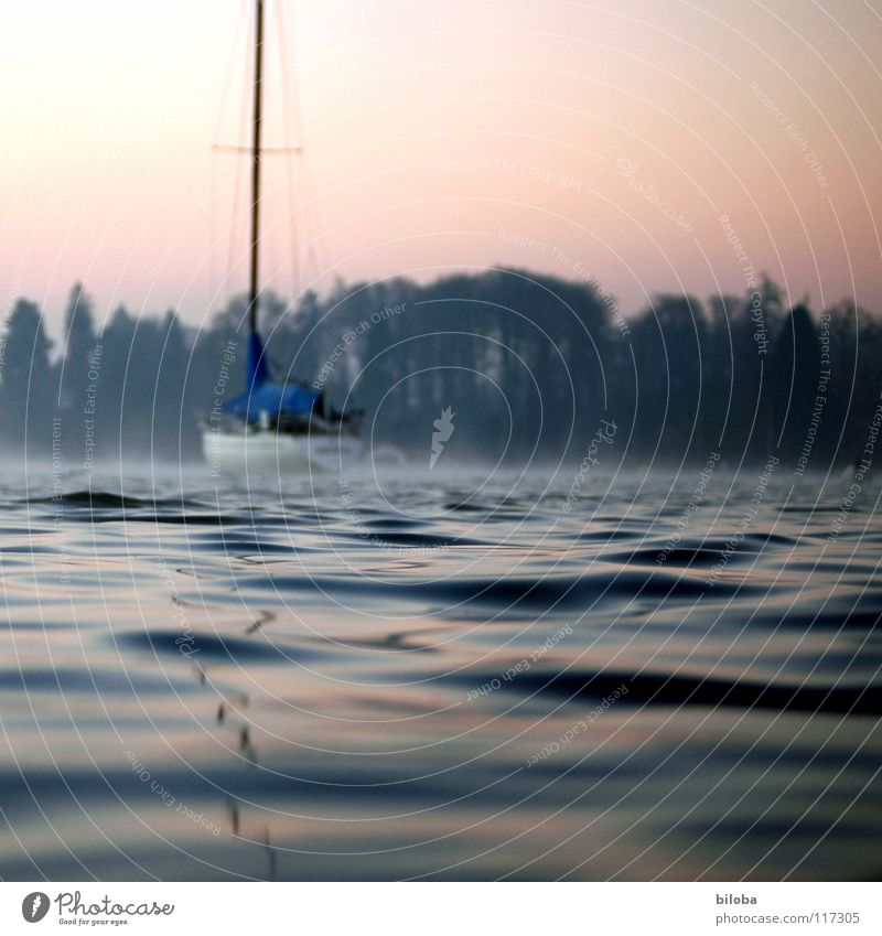 Boat II Himmel Natur Wasser Winter ruhig Wald kalt Freiheit See Stimmung Wasserfahrzeug Wellen Nebel frei Schweiz Schifffahrt