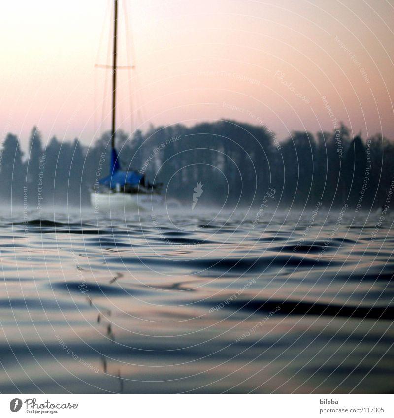 Segelboot in sanften Wellen auf dem See. Boot Wasser Wasseroberfläche spiegeln wiegen liquide kalt tief Wald Nebel Stimmung unberührt harmonisch Winter ruhig