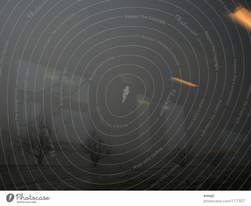 Nachteinbruch Eisenbahn fahren Winter trist Ödland Schnee Nebel Bahnfahren Licht Reflexion & Spiegelung Beleuchtung kalt Baum Feld ländlich Schweiz grau