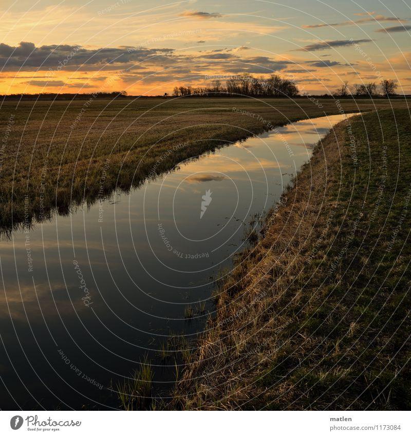 Wasserleitung Umwelt Landschaft Pflanze Himmel Wolken Horizont Sonnenaufgang Sonnenuntergang Frühling Wetter Schönes Wetter Baum Gras Wiese Küste Flussufer