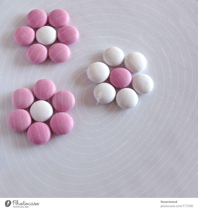 Linsen-Legespiel 1 Blume Blüte Feste & Feiern Geburtstag süß Süßwaren Schokolade Zucker Jubiläum Kindergeburtstag Schokolinsen