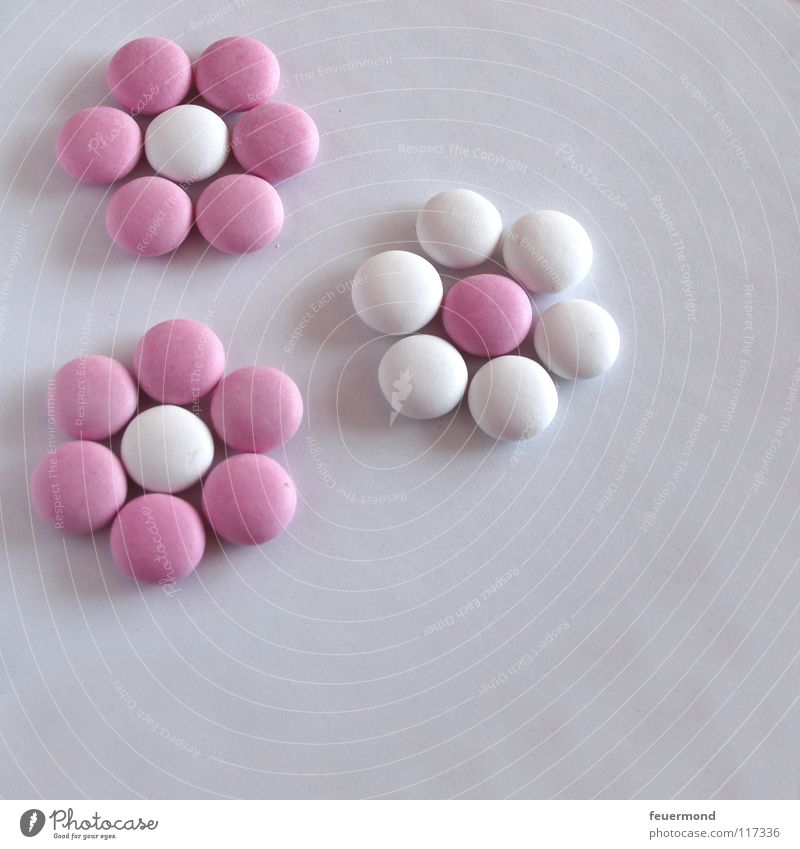 Linsen-Legespiel 1 Schokolinsen Süßwaren Schokolade Blume Blüte süß Kindergeburtstag Zucker Blütenwiese Feste & Feiern Geburtstag Schnuckel