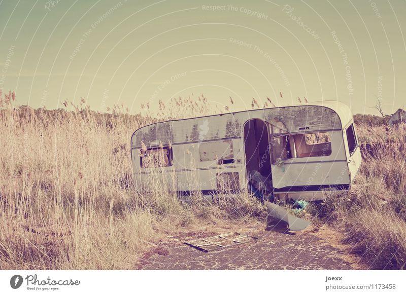 Angekommen Ferien & Urlaub & Reisen Ausflug Abenteuer Ferne Freiheit Camping Sommerurlaub Häusliches Leben Umwelt Wolkenloser Himmel Schönes Wetter Wohnwagen