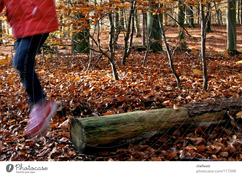 Waldhüpfer Kind rot Blatt Wald Herbst springen Baumstamm