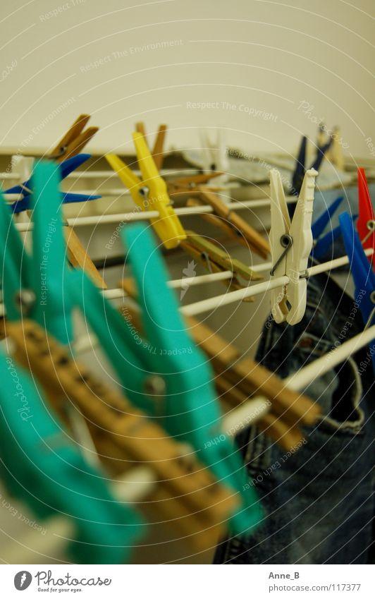Klammergarten 2 blau Bekleidung Jeanshose nah einfach Häusliches Leben Dinge Hose Kunststoff Jeansstoff türkis hängen Wäsche Haushalt Anschnitt trocknen