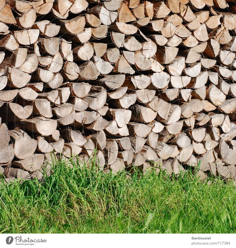 Kaminfutter Garten Energiewirtschaft Wärme Gras Wiese Holz Warmherzigkeit Holzstapel Brennholz heizen Brennstoff Farbfoto Muster Strukturen & Formen Schatten