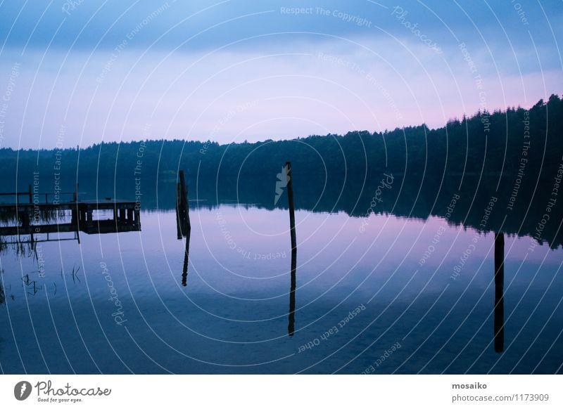 See am späten Nachmittag Himmel Natur Ferien & Urlaub & Reisen blau Pflanze Wasser Erholung Landschaft ruhig Wald kalt Umwelt Traurigkeit Horizont