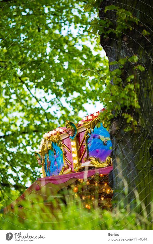 frühlingsfestkarussell Freizeit & Hobby Ferien & Urlaub & Reisen Abenteuer Feste & Feiern Jahrmarkt Veranstaltung Natur Baum Gras Park Feld Wald Dorf Kleinstadt