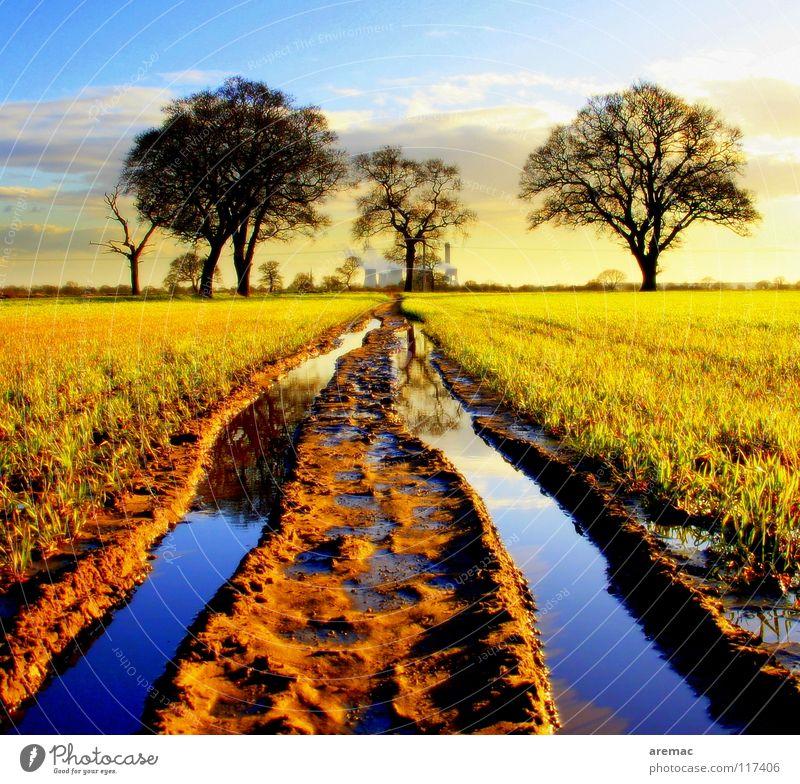 Tiefe Spuren Landwirtschaft Feld Baum Frühling Wasser Himmel tief Stromkraftwerke Farbe Traktorspur