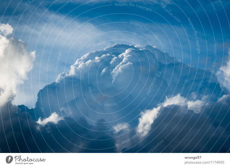 Wolkenberg Natur Urelemente Luft Himmel nur Himmel Sommer Unwetter bedrohlich dunkel blau grau schwarz weiß Wolkenhimmel Wolkenbild Kumulus Wetterumschwung
