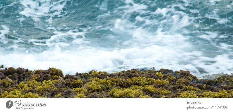 Fließendes Wasser Natur Ferien & Urlaub & Reisen blau Pflanze grün Sommer Umwelt Leben Bewegung Hintergrundbild Schwimmen & Baden Freizeit & Hobby Wellen