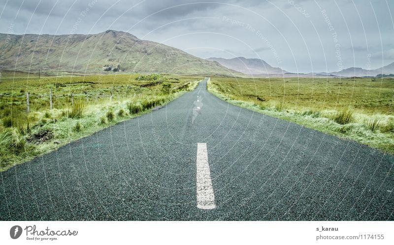Irische Landstraße Natur Landschaft Erde Himmel Wolken Horizont schlechtes Wetter Gras Sträucher Moos Hügel Berge u. Gebirge Feld Menschenleer Verkehrswege
