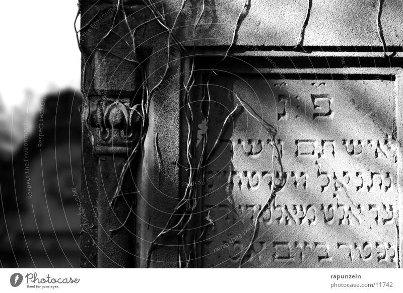 Und die Sonne auf mein Grab ... Sonne Stein Dekoration & Verzierung historisch Friedhof bewachsen Grab Grabstein Judentum Grabmal Aufschrift Religion & Glaube