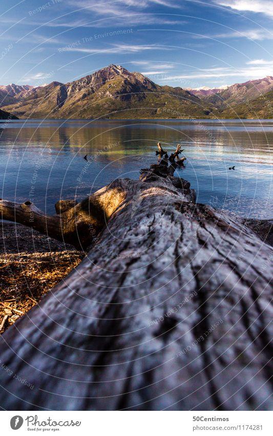 silence of Patagonia Himmel Natur Ferien & Urlaub & Reisen Sommer Baum Landschaft Wolken Tier Ferne Berge u. Gebirge Frühling Schnee Freiheit See Tourismus