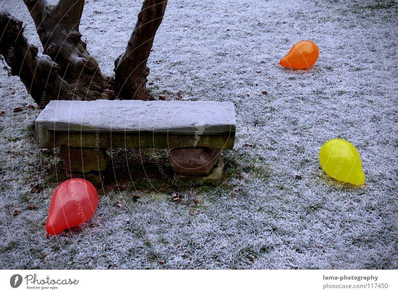 101 - Party schon vorbei... blau weiß grün Baum rot Winter Einsamkeit gelb Farbe kalt Wiese Schnee Garten Wärme Stein Traurigkeit