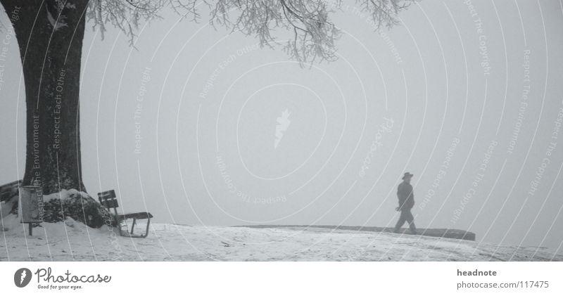 Winterruhe Nebel Baum wandern kalt weiß Platz ruhig Mann trist Eimer Mantel Verkehr Bank Einsamkeit Frost Schnee Ast Hut