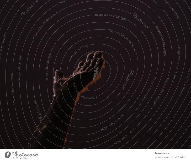 gerere = lat. tragen --> Geste Hand Statue Budapest Festung dunkel schwarz gestikulieren Handfläche Detailaufnahme unganr Schnee Eis Frost zeigen festhalten