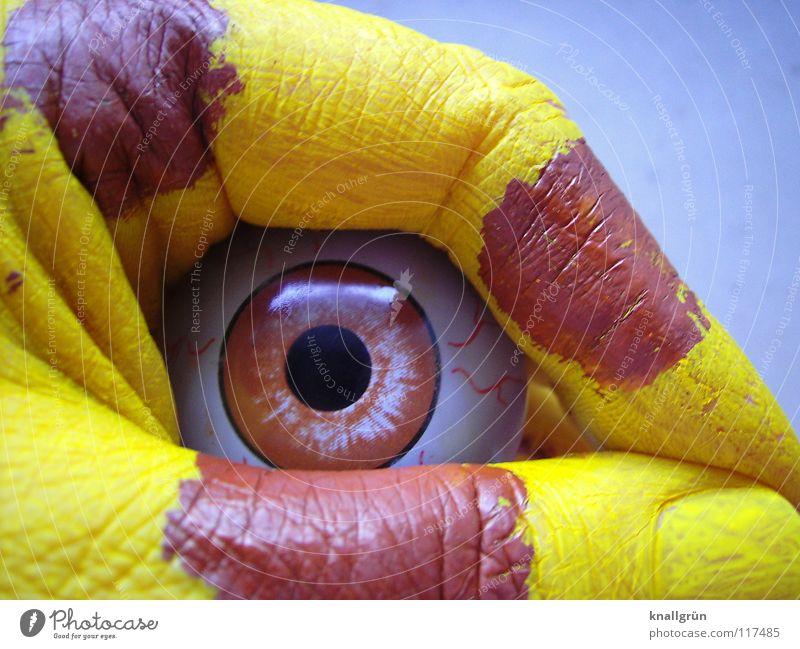 Tierisch Hand Auge Tier obskur tierisch scheckig Pupille