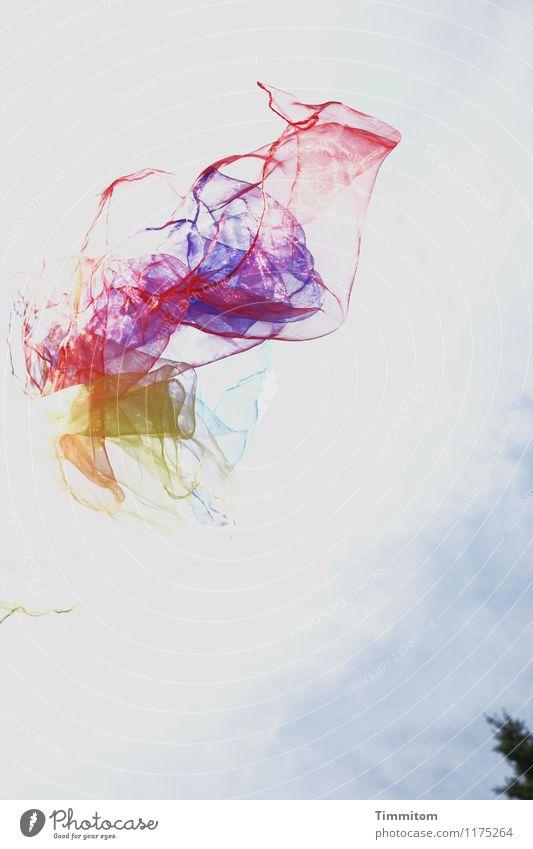 Träume... Freizeit & Hobby Umwelt Himmel Wolken Baum Tuch werfen blau gelb rot weiß Gefühle ästhetisch Leichtigkeit Schweben jonglieren Baumkrone träumen