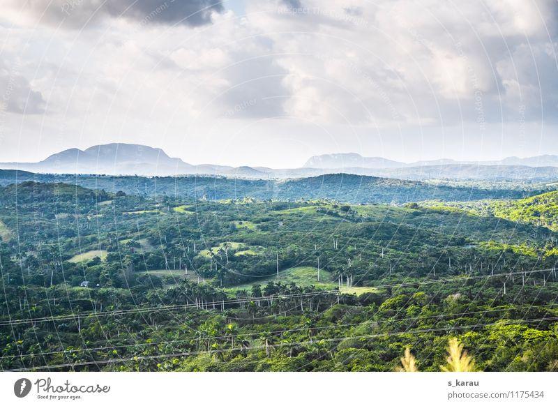 Tropenlandschaft am Morgen Ferien & Urlaub & Reisen Tourismus Abenteuer Ferne Freiheit Sommer Natur Landschaft Pflanze Himmel Wolken Sonnenlicht Klima