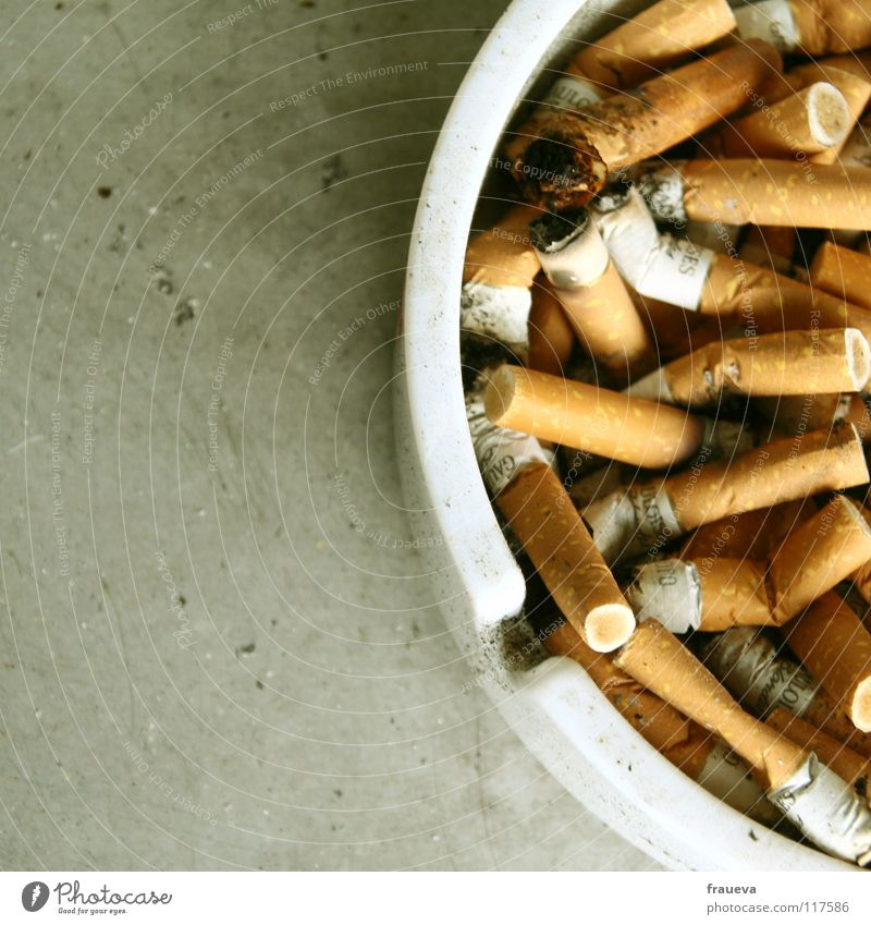 full ashtray Aschenbecher Zigarette Ekel Fensterbrett ungesund Farbe smoke Rauchen Brandasche stümmeln grauslich Nahaufnahme Alkoholisiert health