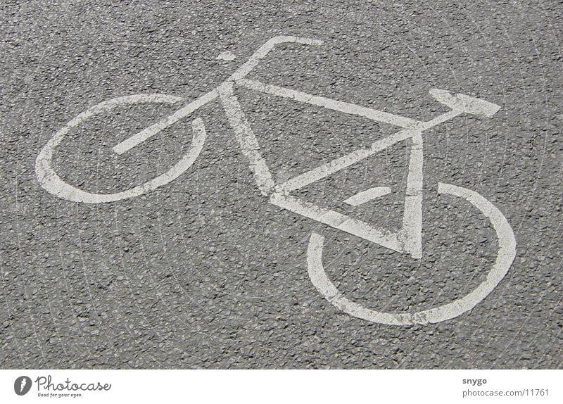 Radweg Straße Bewegung Fahrrad fahren Fahrradweg