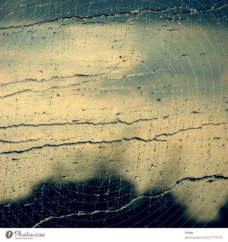 We Can Stand The Rain Natur Wasser Fenster Herbst Bewegung Wege & Pfade Wetter Regen trist Verkehr Glas Geschwindigkeit Wassertropfen nass Vergänglichkeit