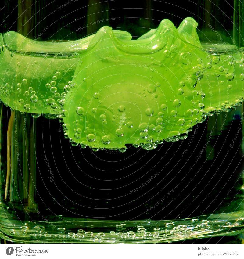 drink a drink Wasser grün Ernährung kalt Lebensmittel hell Eis Gesundheit Glas frisch Getränk trinken Flüssigkeit blasen Blase Im Wasser treiben