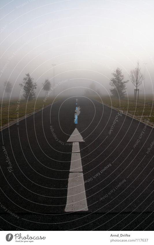 Es geht ein Pfeil nach nirgendwo Teer Asphalt Fahrbahn Fahrbahnmarkierung Linie Linearität Mitte Nebel Morgen Baum Horizont Wiese dunkel weiß braun grau