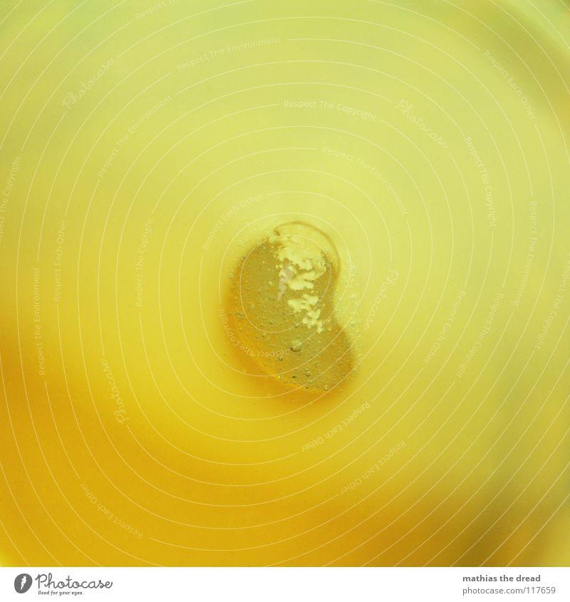 ALMOST LIQUID gelb kalt Eis orange klein Glas Getränk Ecke trinken Vergänglichkeit Gastronomie Flüssigkeit Alkohol Luftblase Am Rand Erfrischung