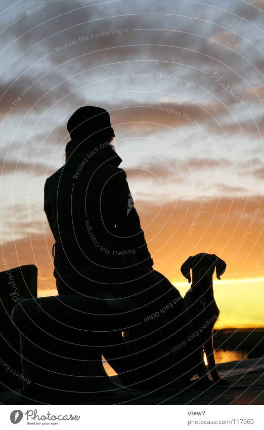 Silhouette Frau Himmel Ferien & Urlaub & Reisen schwarz Hund Kopf Küste Horizont Romantik Ohr Silhouette Richtung Säugetier Verlauf Umrisslinie