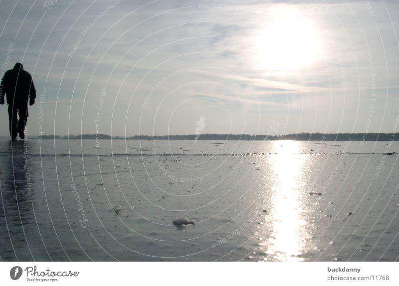 lonesome on the ice Wasser Sonne kalt Eis