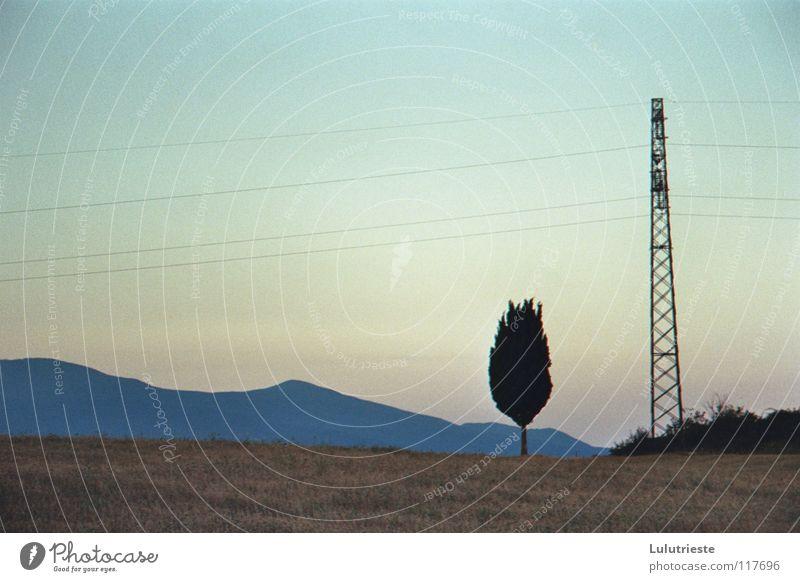 Under the Tuscan sun Baum rosa hell-blau Strommast Elektrizität Romantik frei Sonnenaufgang Sonnenuntergang Gefühle Freizeit & Hobby Berge u. Gebirge Landschaft