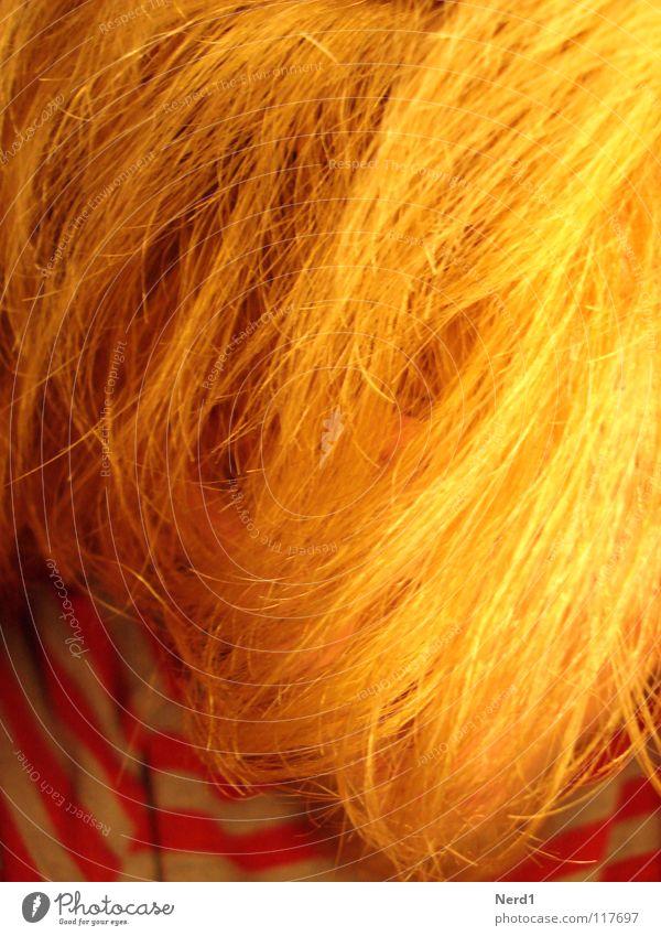 Gelbe Haare gelb blond Mann obskur Haare & Frisuren Männerhaare langhaarig gesichtslos anonym unerkannt unkenntlich Haarsträhne Haarstrukturen Wuschelkopf Farbe
