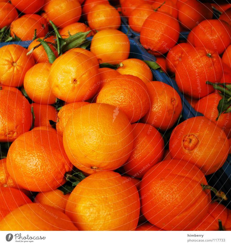 orangencase Natur Sommer Orange Frucht frisch Vitamin Saft Zitrusfrüchte Orangensaft Vitamin C