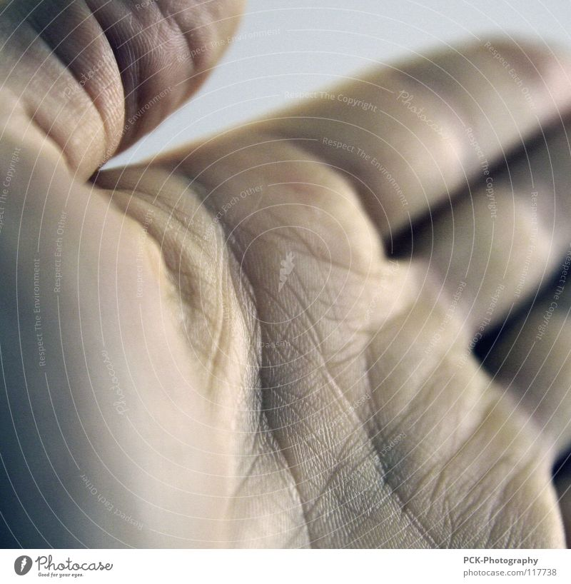 handwerk Hand Handfläche Pore Finger Daumen Einladung Hände schütteln Vertrauen Furche Haut Falte