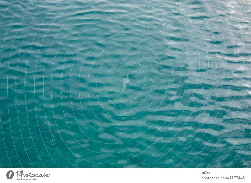 Windstill Natur Ferien & Urlaub & Reisen grün Sommer Wasser Meer kalt Umwelt Schwimmen & Baden See Wellen nass Urelemente Wellness rein Flüssigkeit